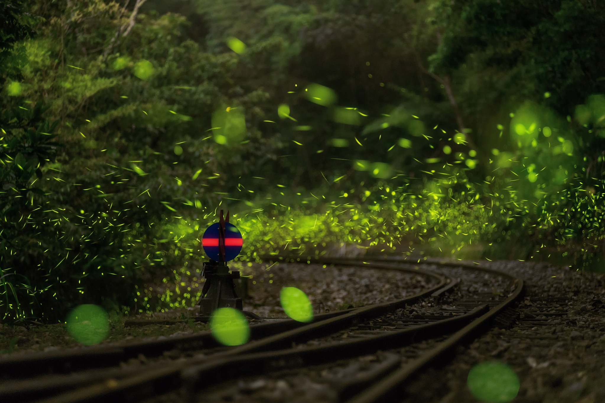 鐵道飛螢 by Yueh Chun Chén