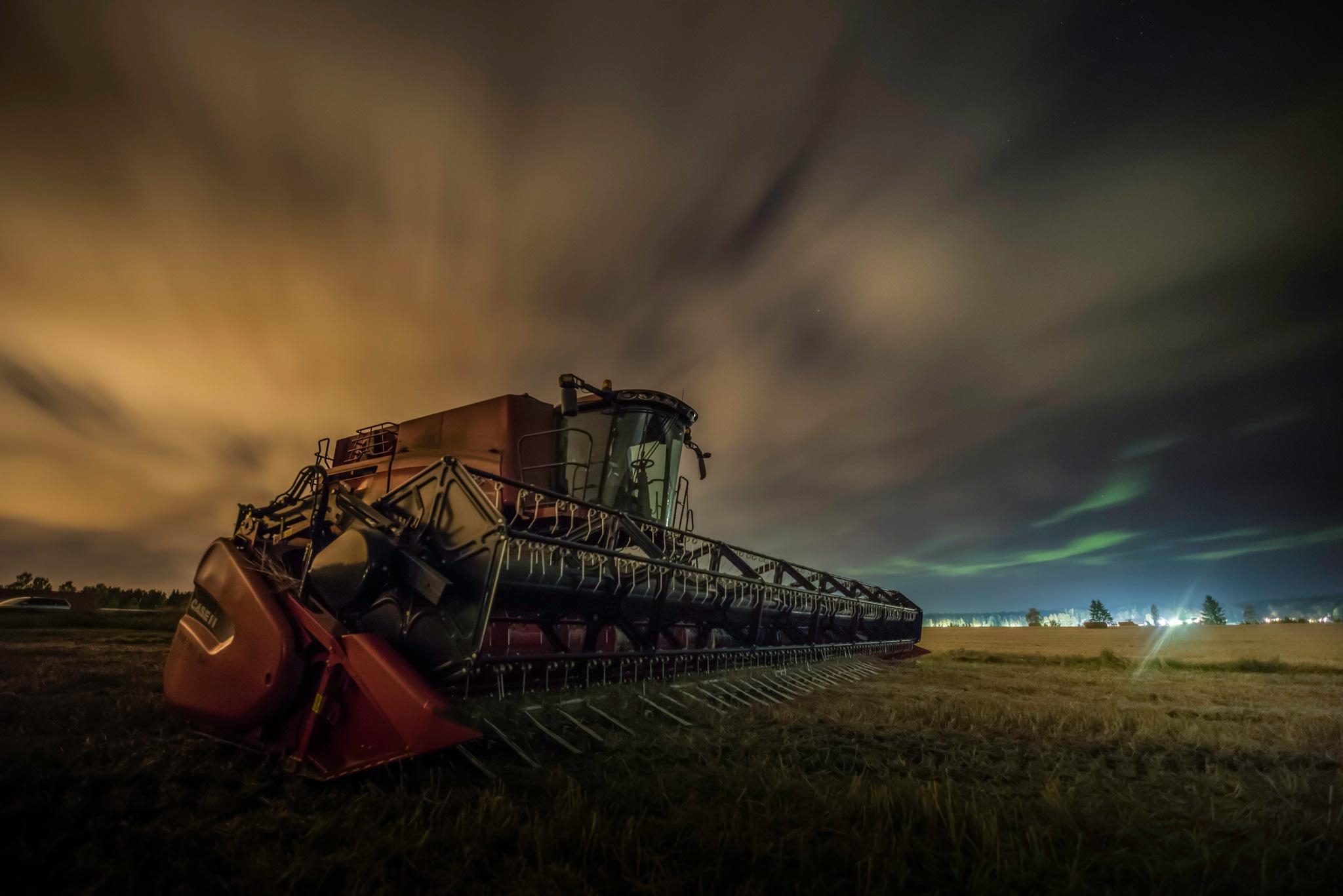 Harvest time by Danne Rydgren