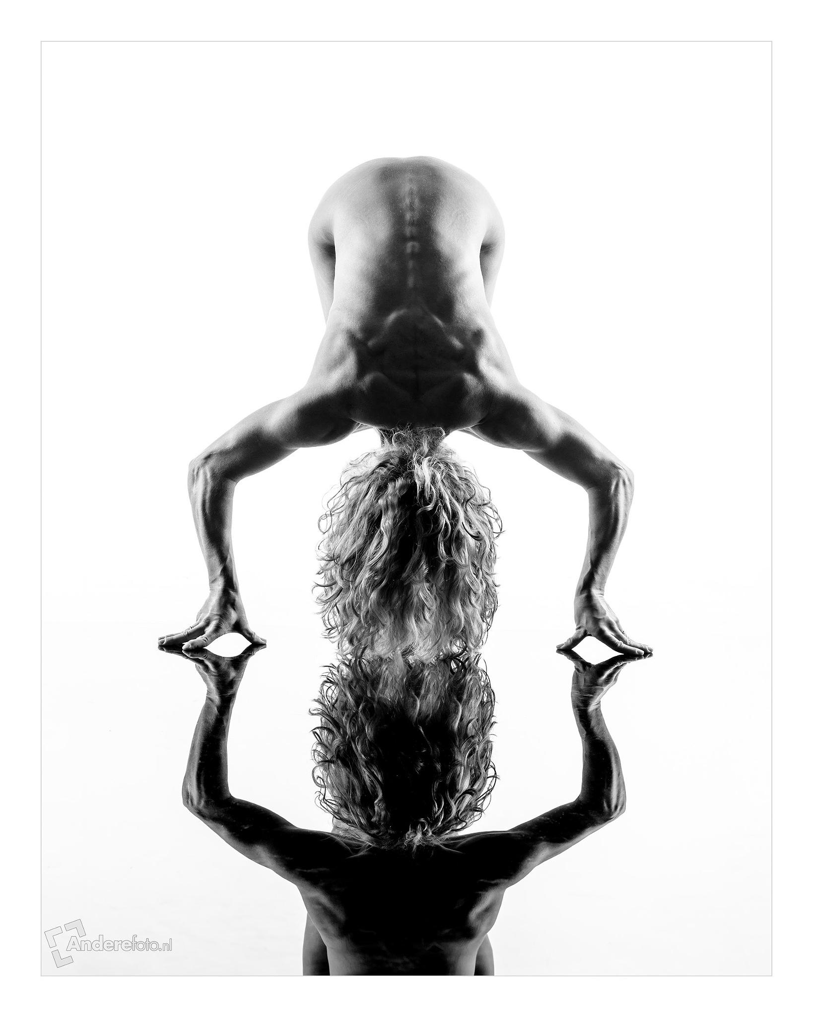 muscular by Serge Duursma