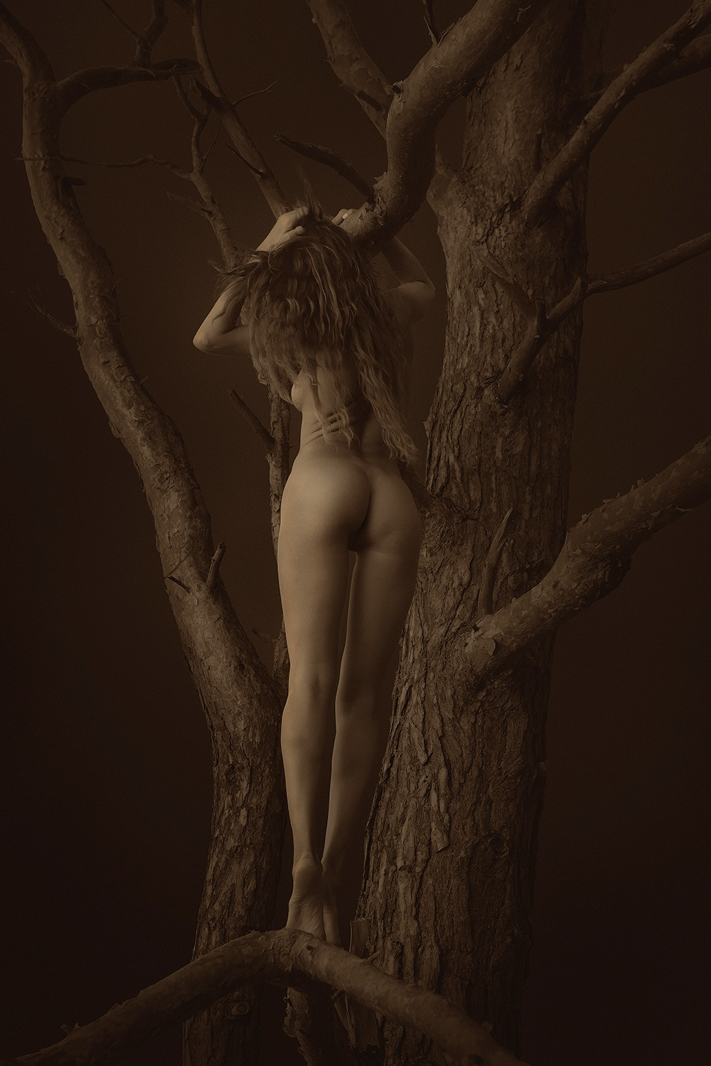 Stories of Dryads - I by Arnis Krumins