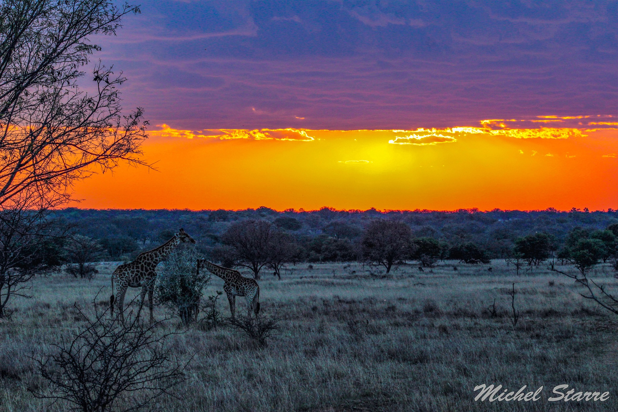 Sunset in Africa by Michel Starre