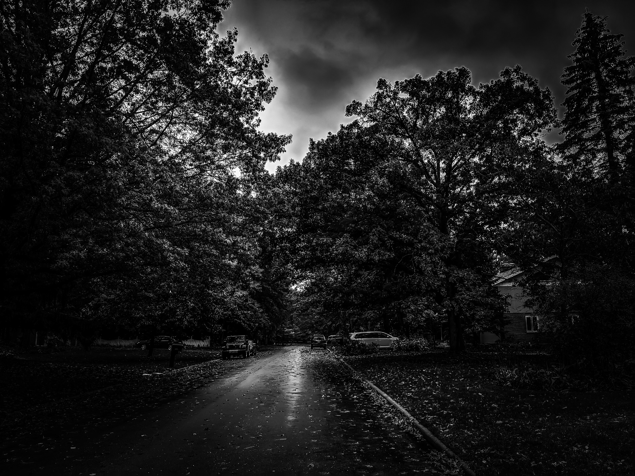 Black and White Midwest Suburb by Connor Brooks McKenzie