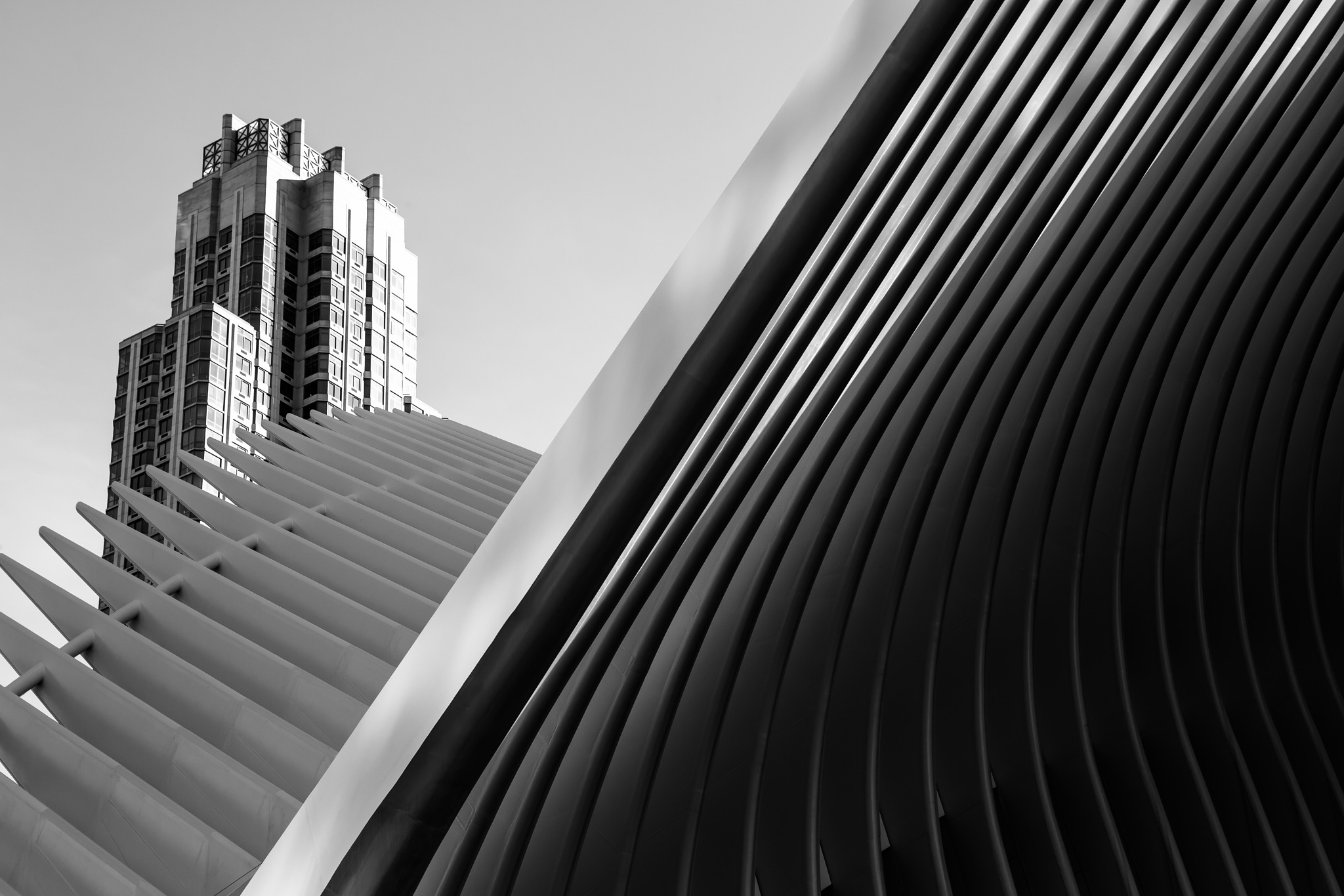 Oculus, New York by Tony Wallbank