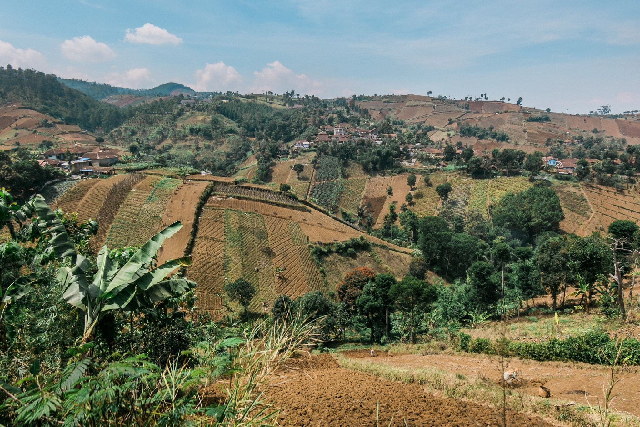 Scenic Hills by RandyTan Travelogue