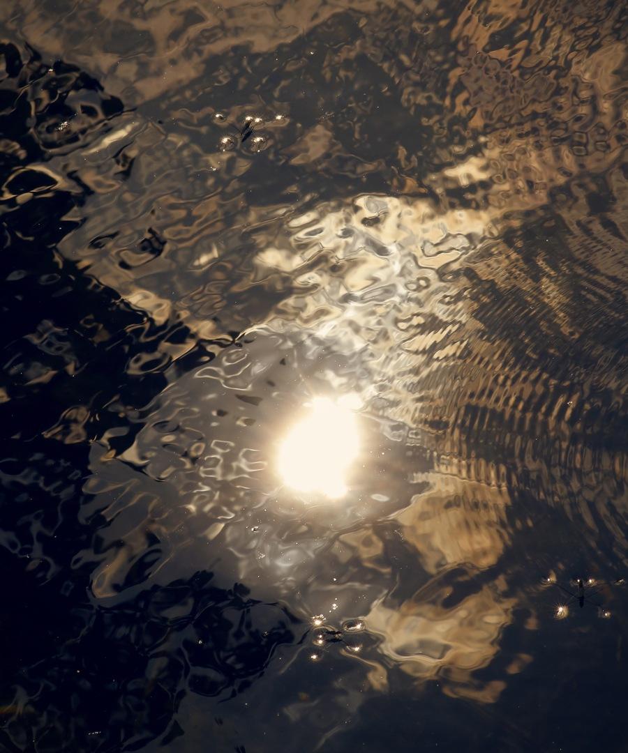 Lights by Martin MacGibbon