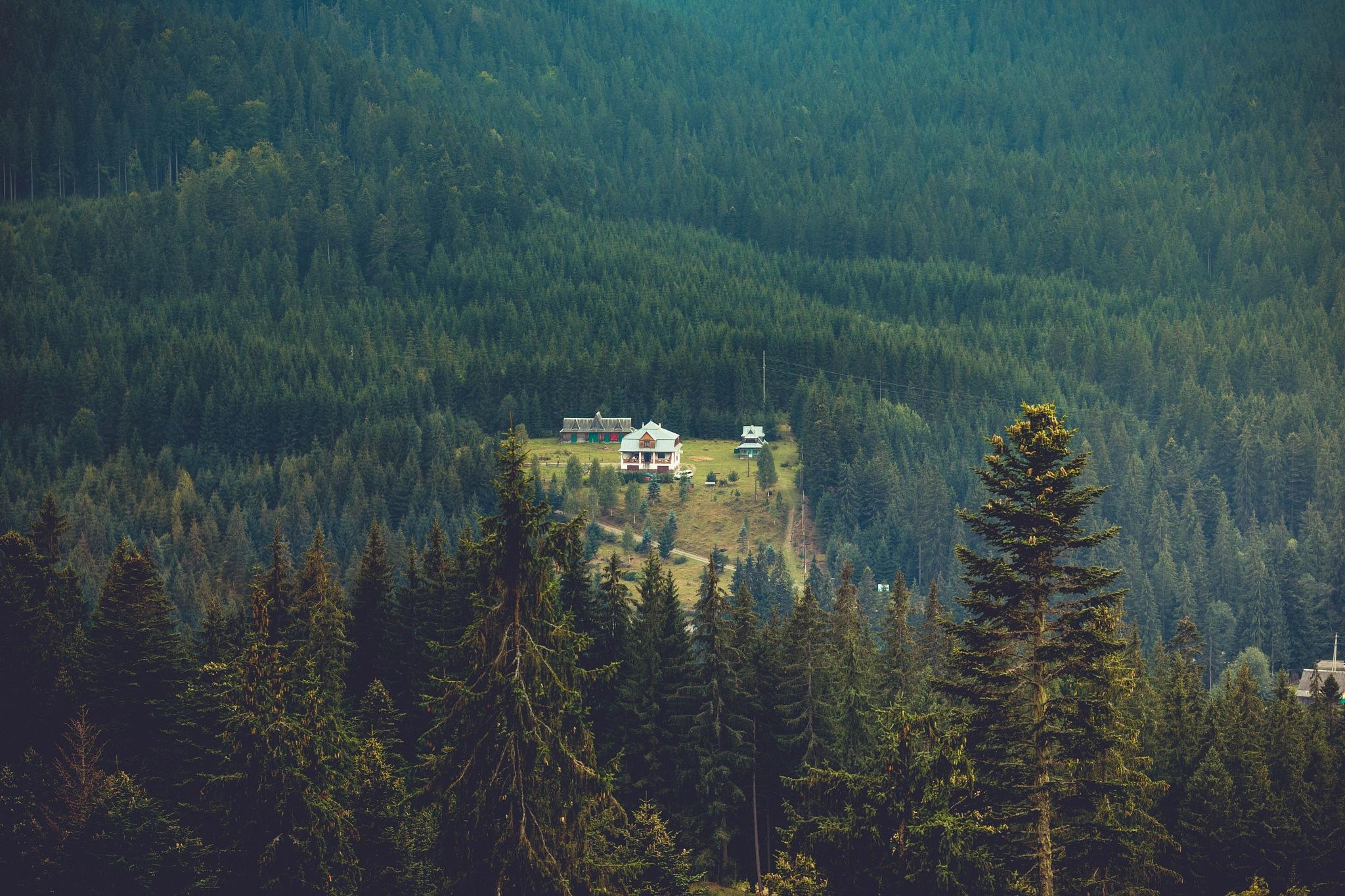 Carpathian by seyrior
