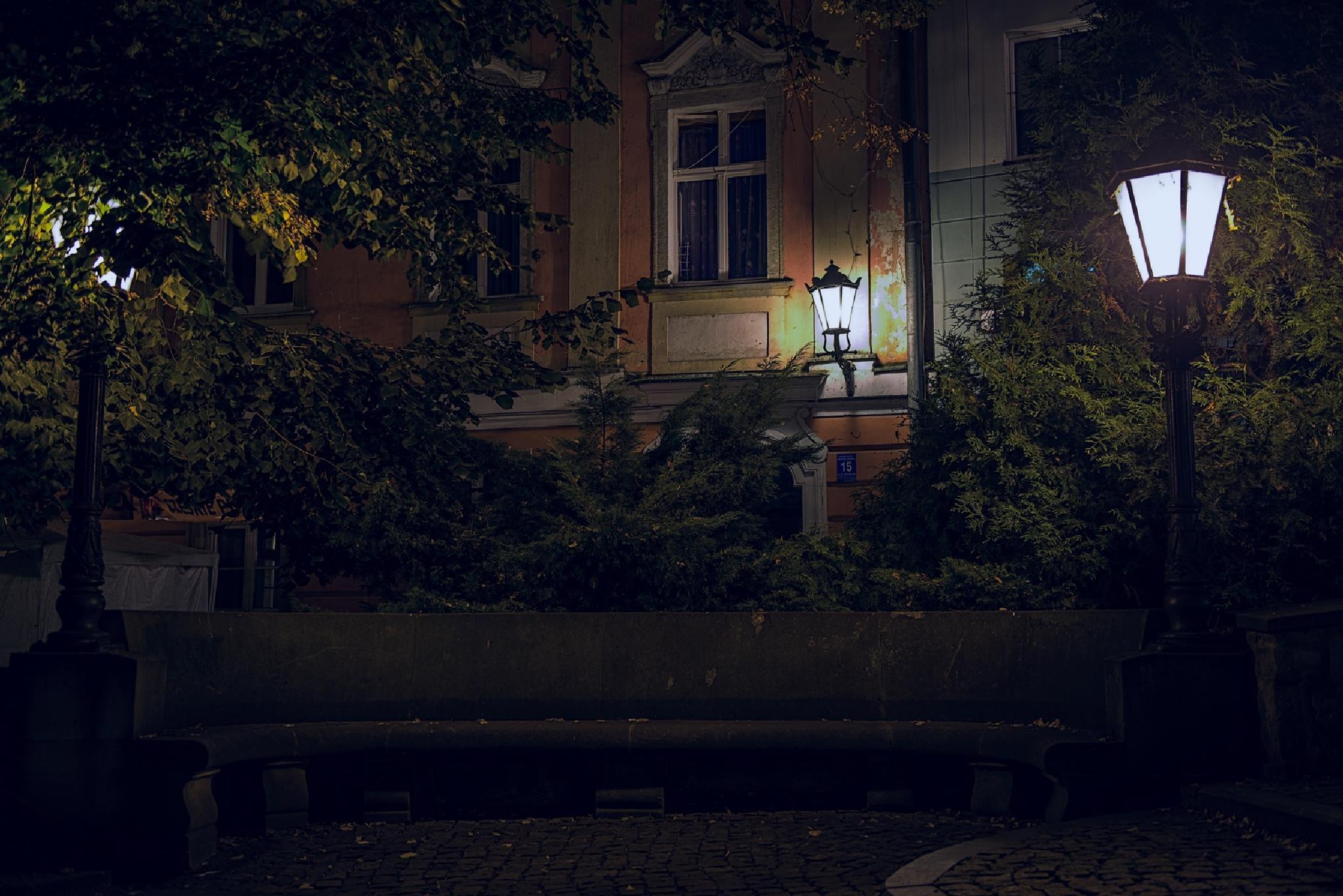 Bench by Waldemar Sadlowski