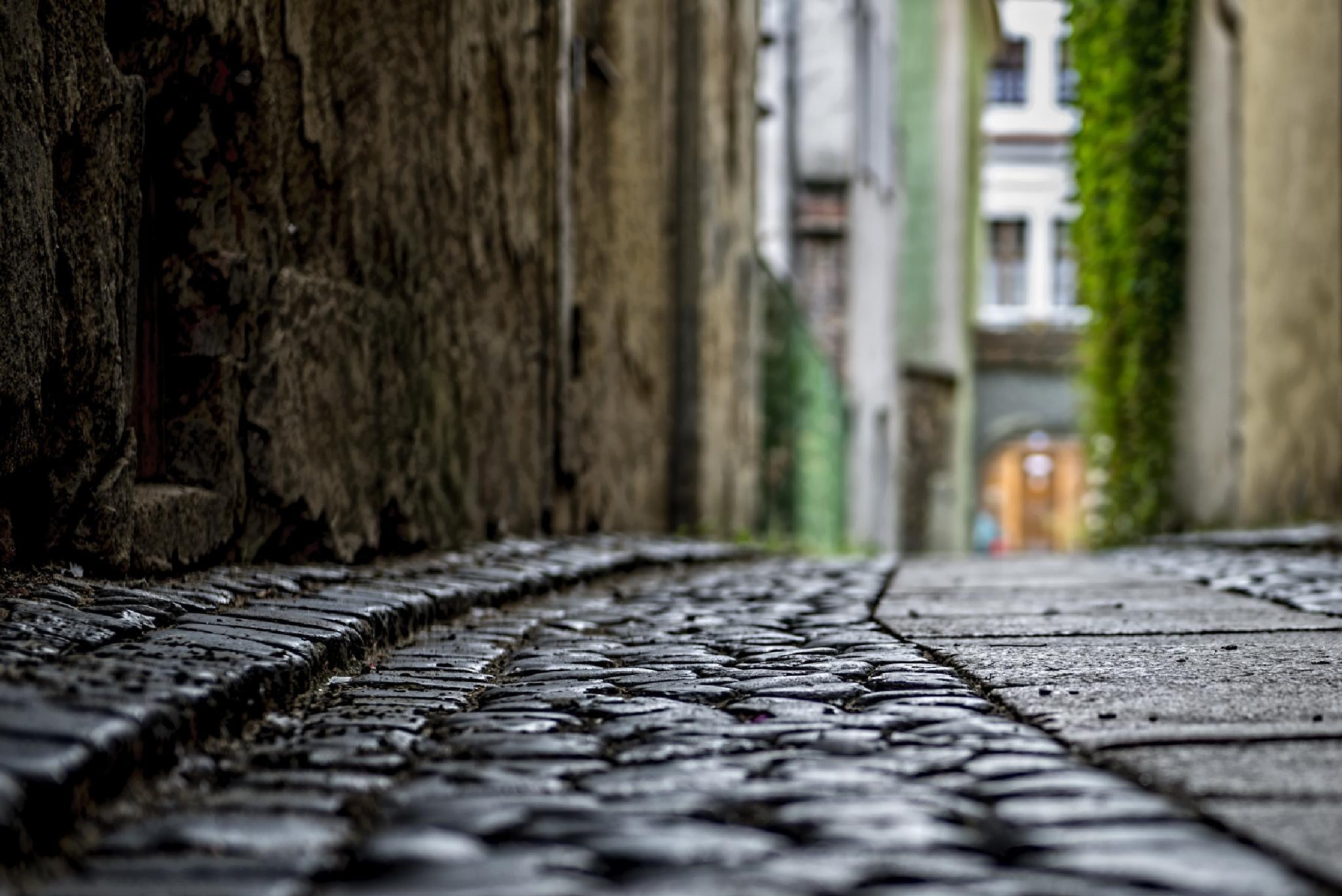 Goerlitz, Germany - pavement by Waldemar Sadlowski