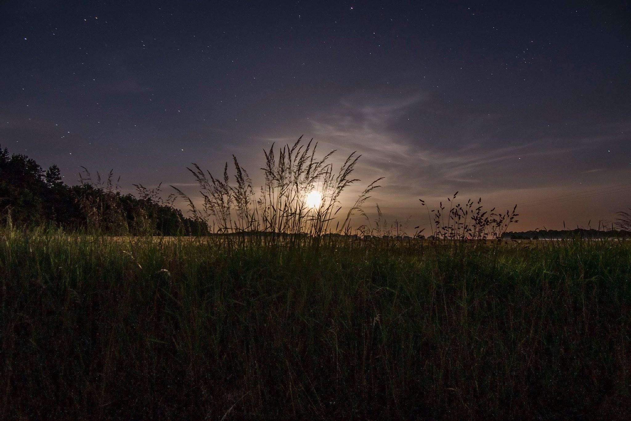 Moonlit Night. by Waldemar Sadlowski