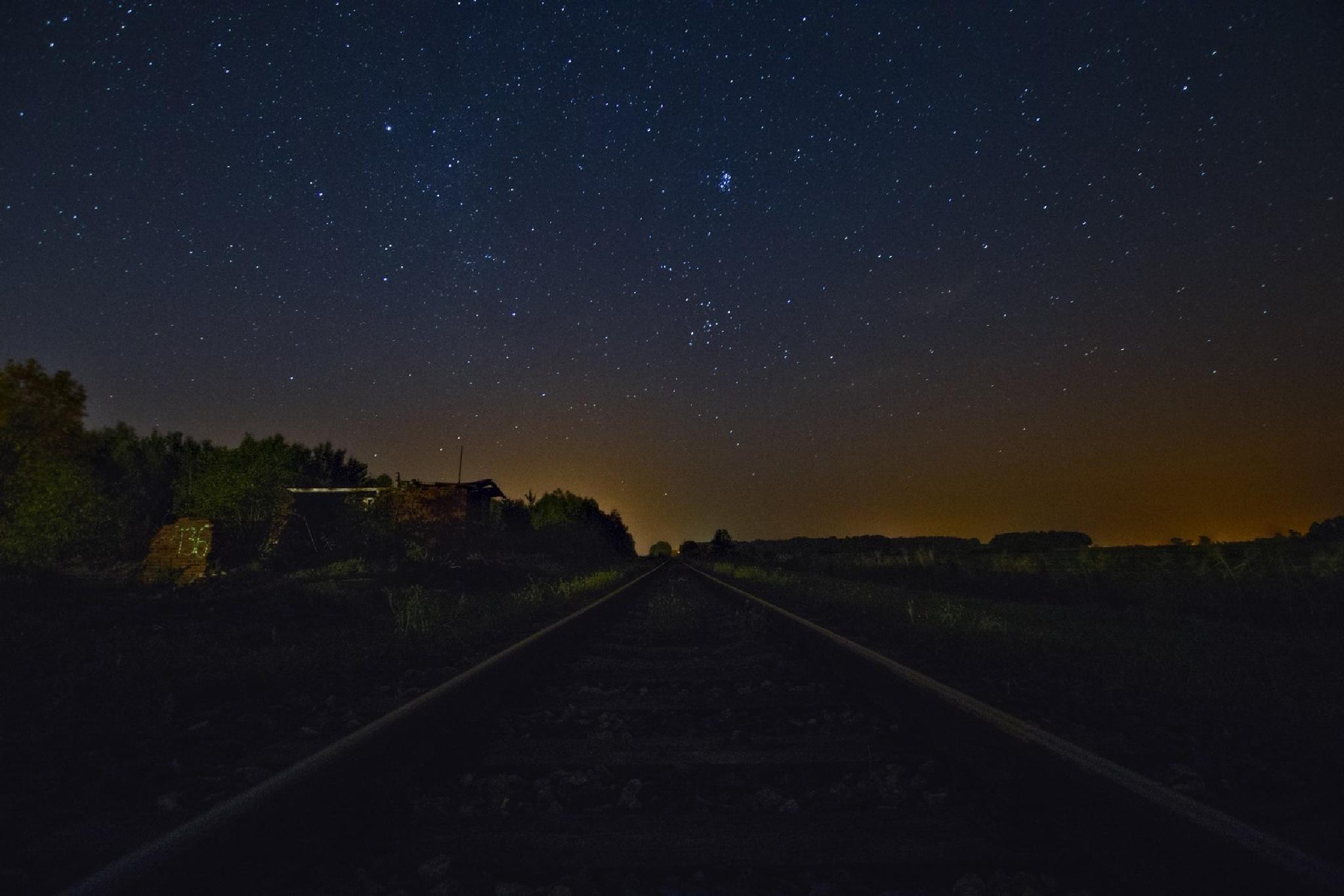 Night vision by Waldemar Sadlowski