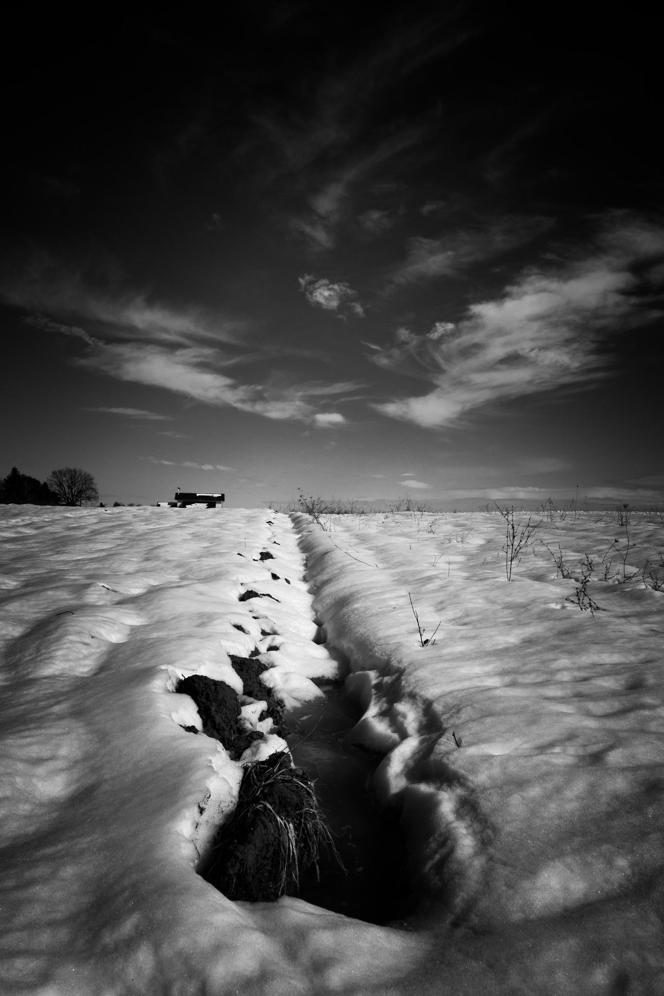 Strange Days by Kruno Kuprešak
