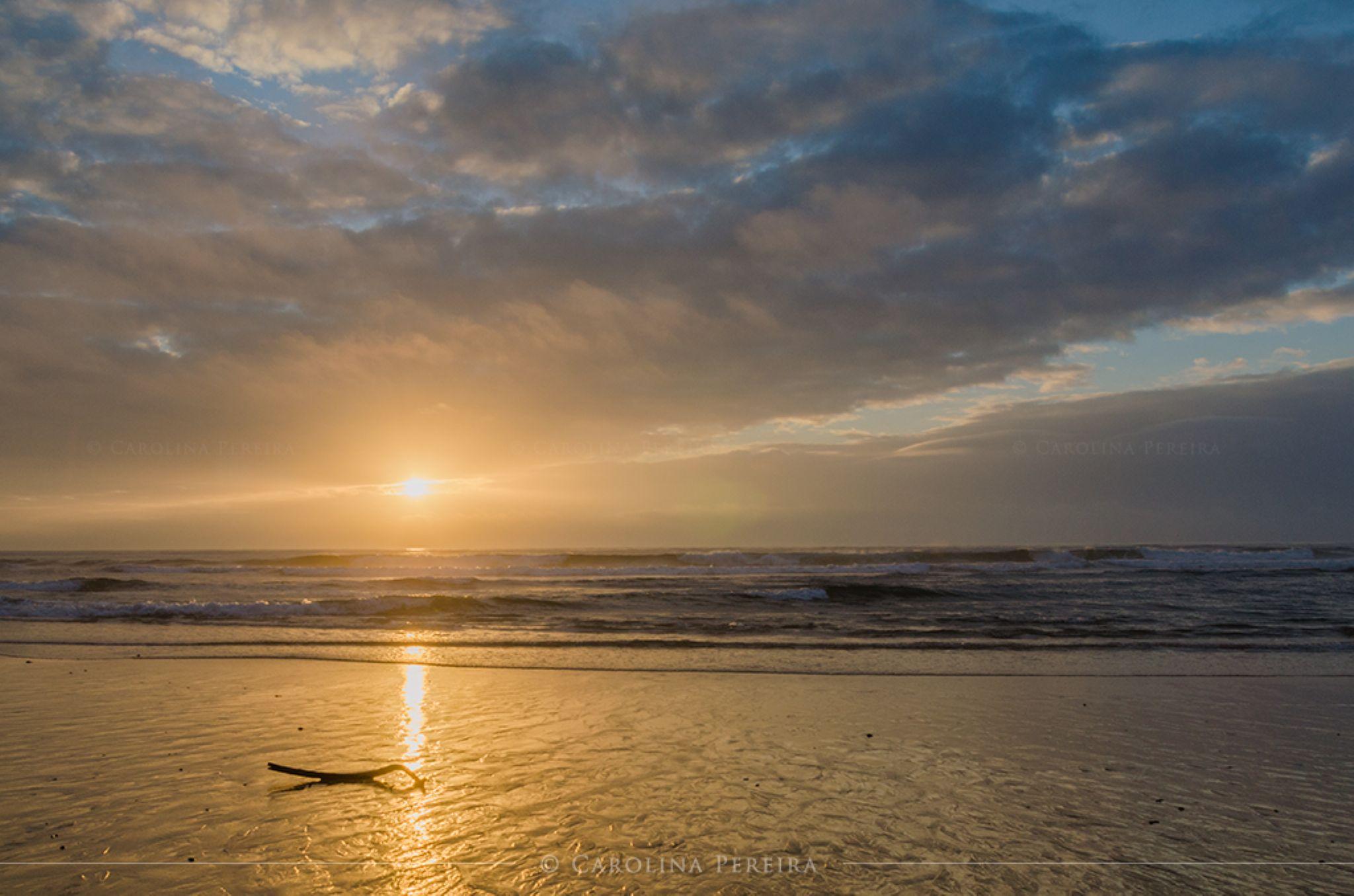 Bright Sunset by Carolina Pereira