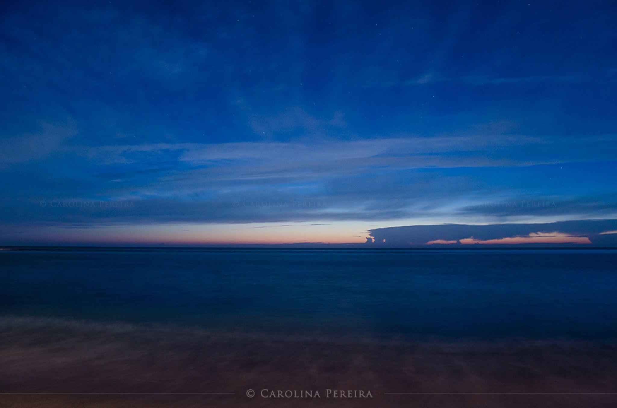 Deep Blue by Carolina Pereira