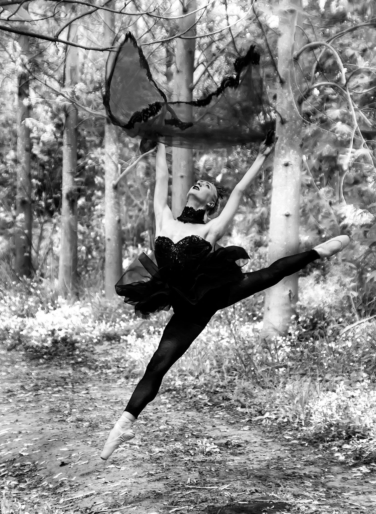 Up in the air in monochrome by Rebecca Danieli