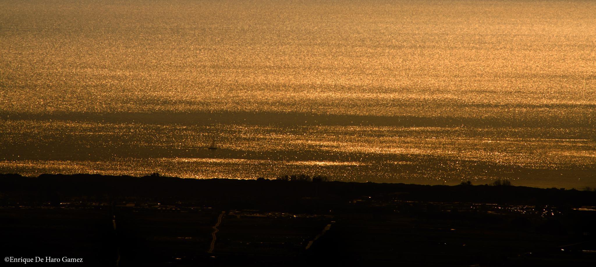 Winter gold sea. by Enrique de haro gamez
