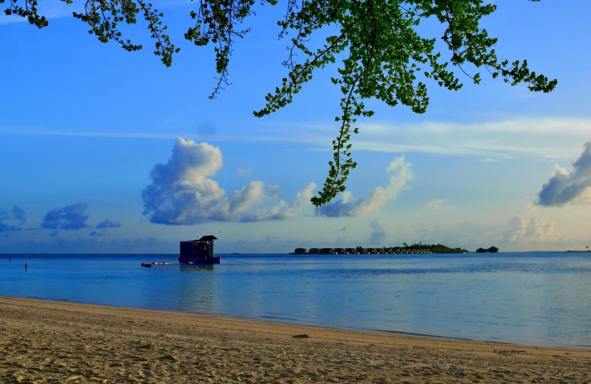 Beach by Lishan Galagama