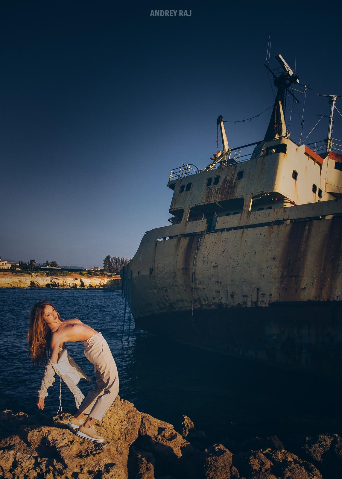 Ship Fox by Andrey Raj