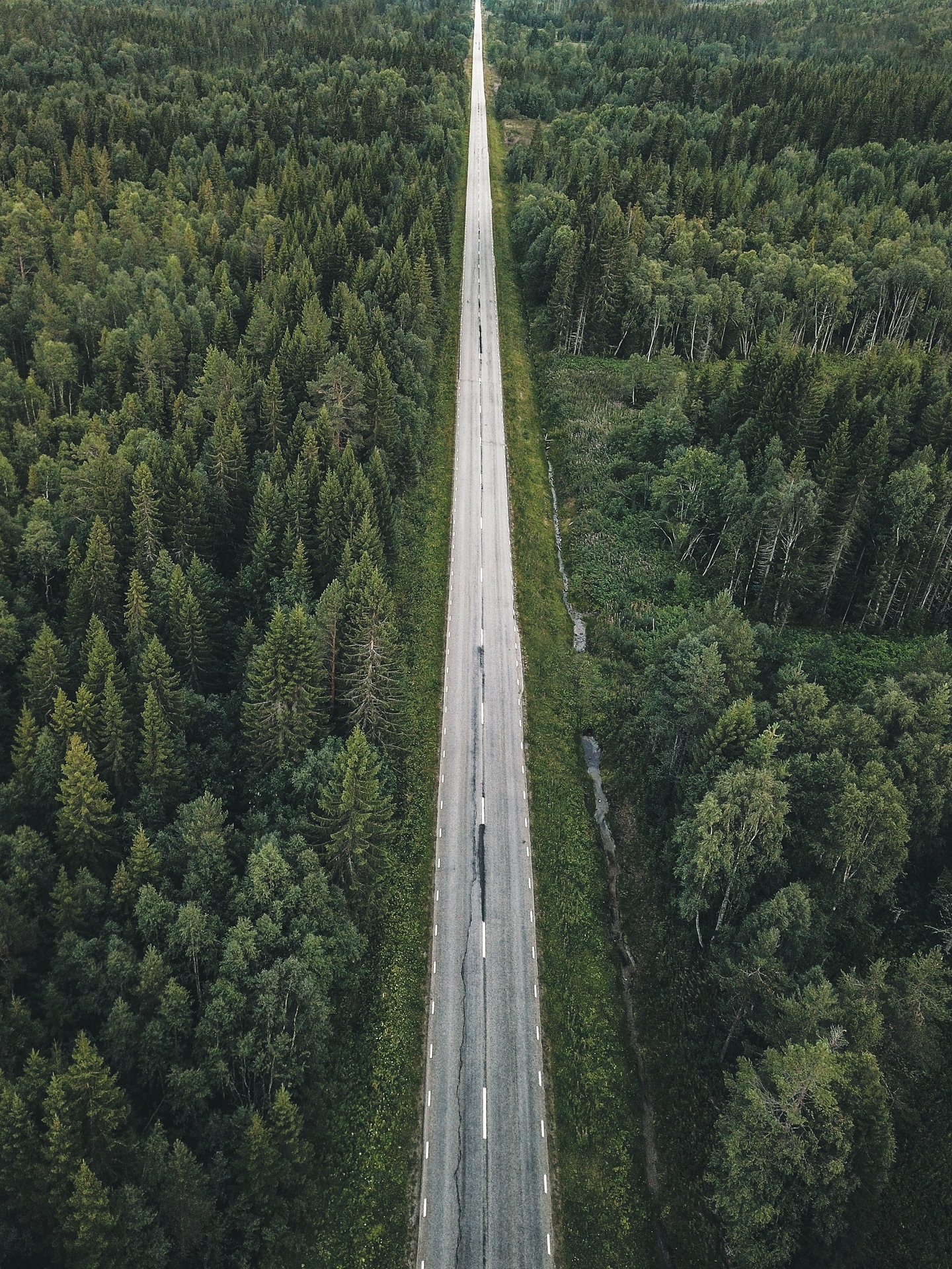 Road by Johnny