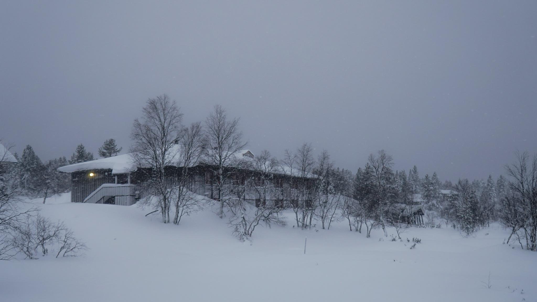 frozen by JIHO PARK