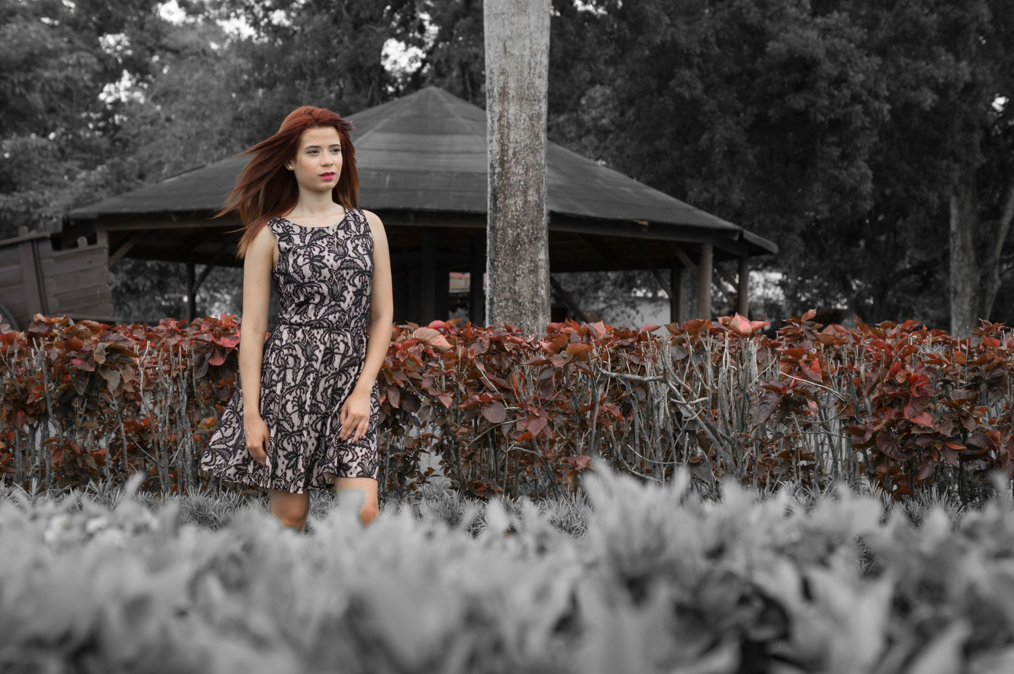 Adriana Red by Edward Lee Thompson