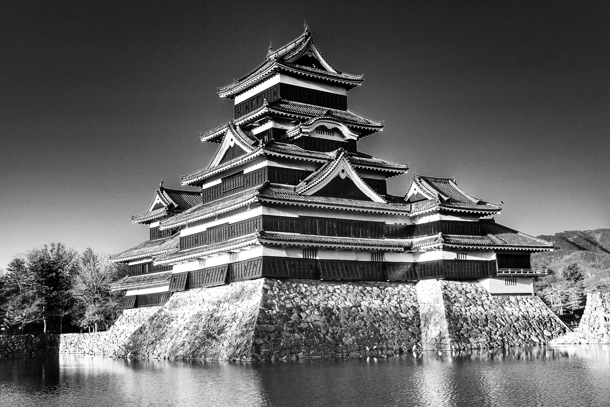 Matsumoto castle by Armed-with-a-smile