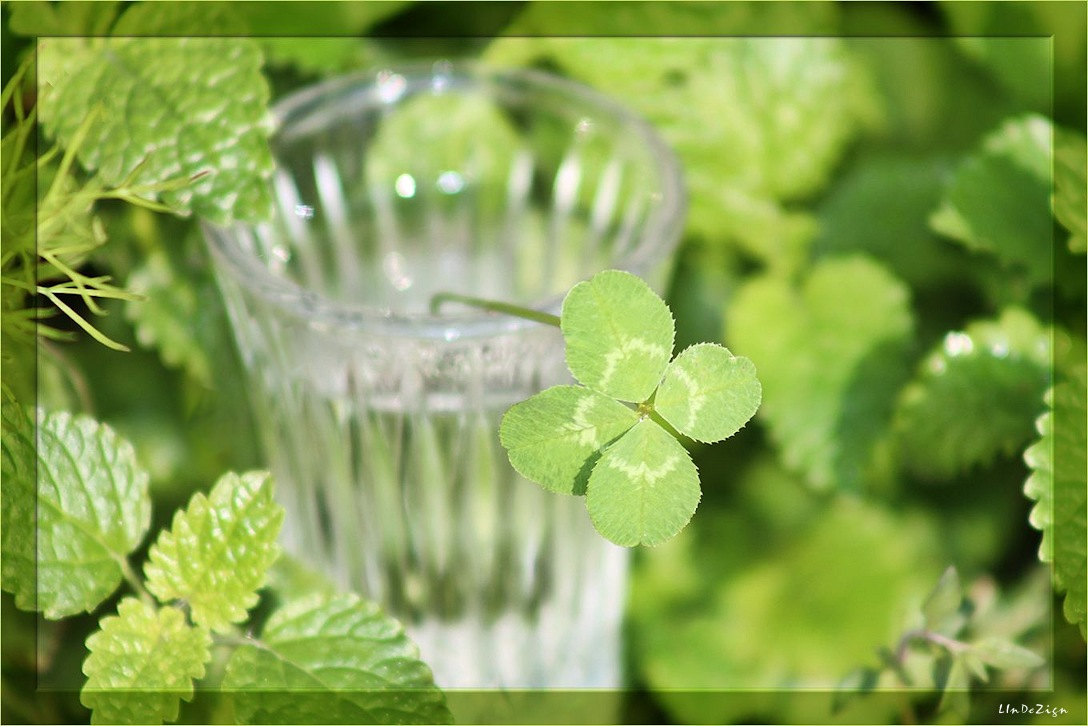 ~ Happy St. Patrick's Day ~ by LInDeZign