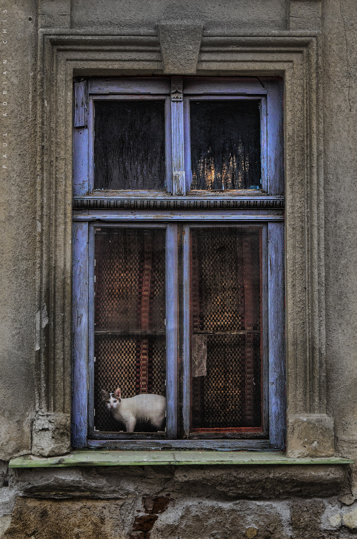 blue window by Paul Adrian Chis