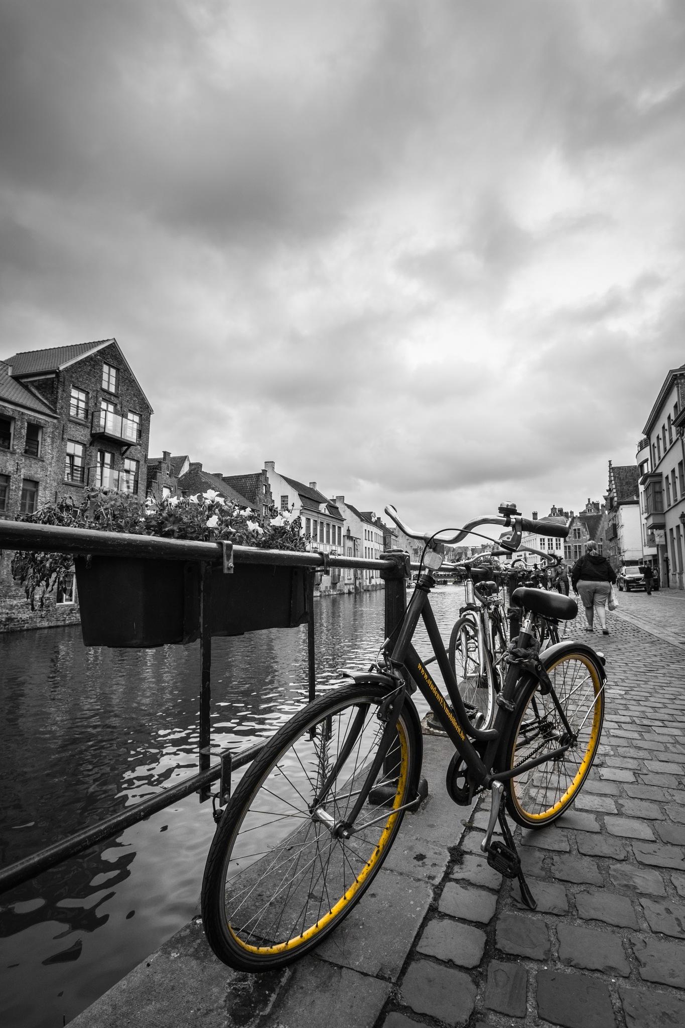 Bike and Gold by Julien Hudym