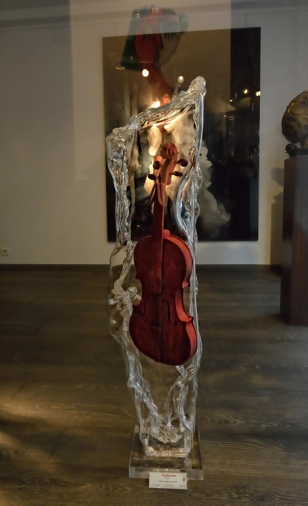 violin in Epoxy by Pozofolio