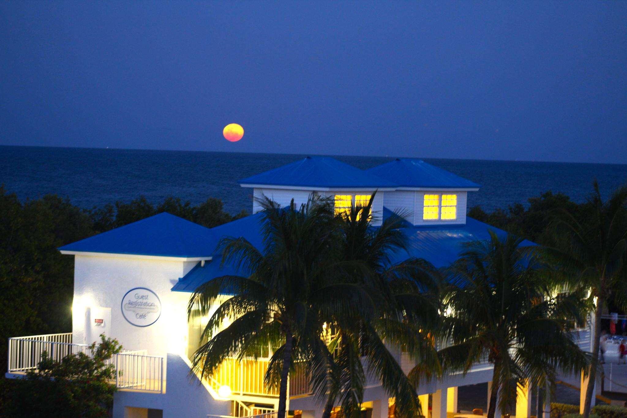 Blood Orange Moon over Tavenier - www.whatyagotmiami.com by WhatYaGotMiami