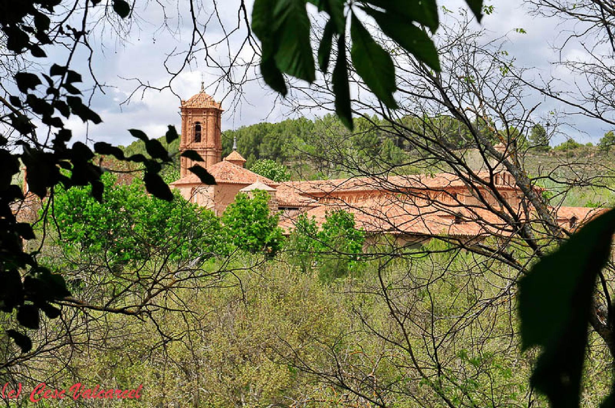 Monasterio de piedra 5 by Cesc Valcarcel
