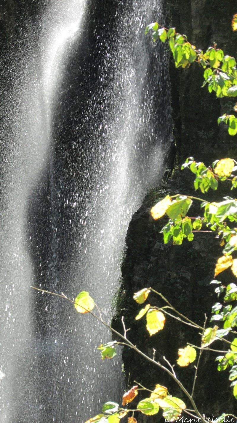 cascade by MarieNoelle