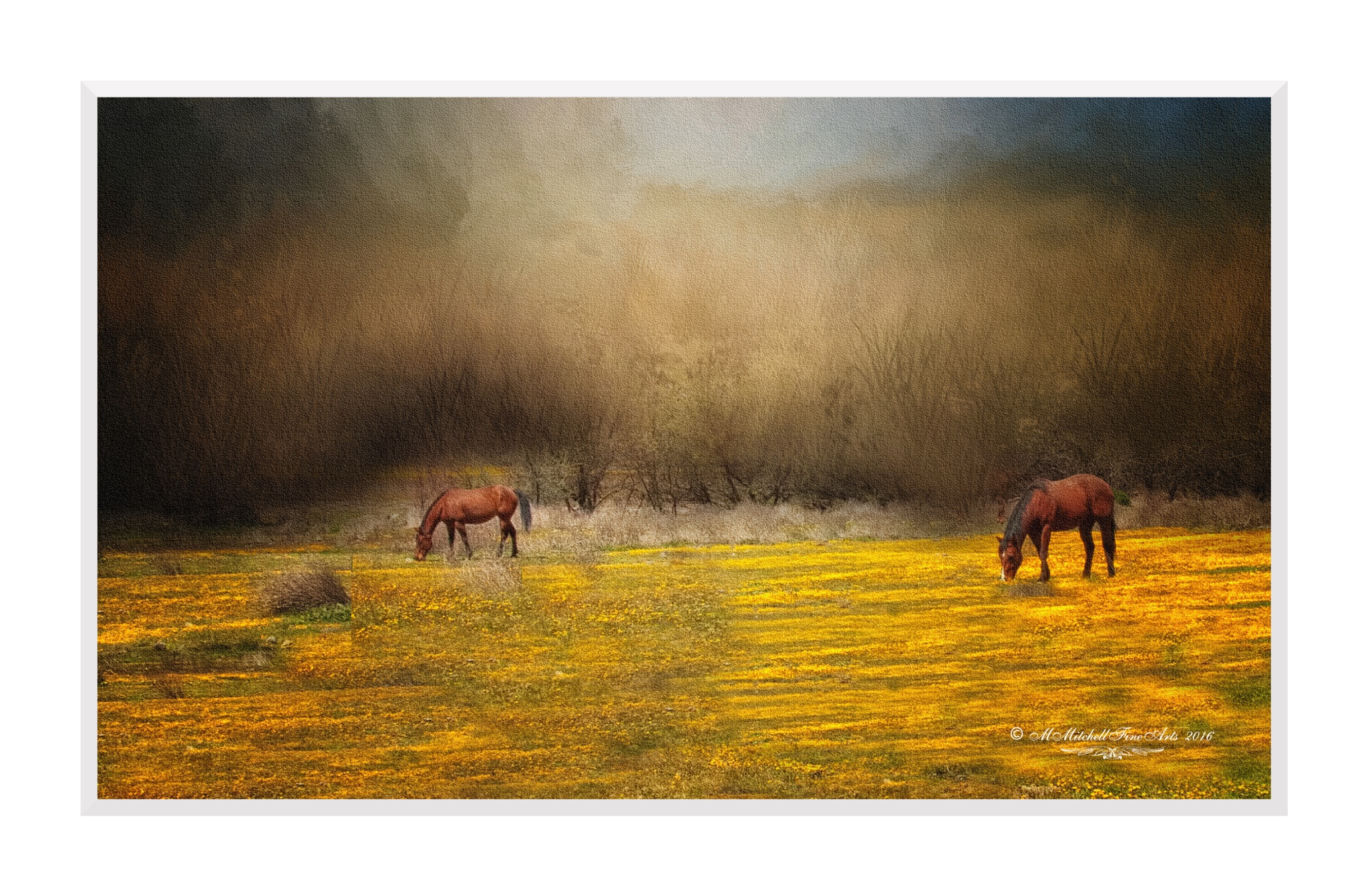 Horses in the Mustard Field by Mary Mitchell