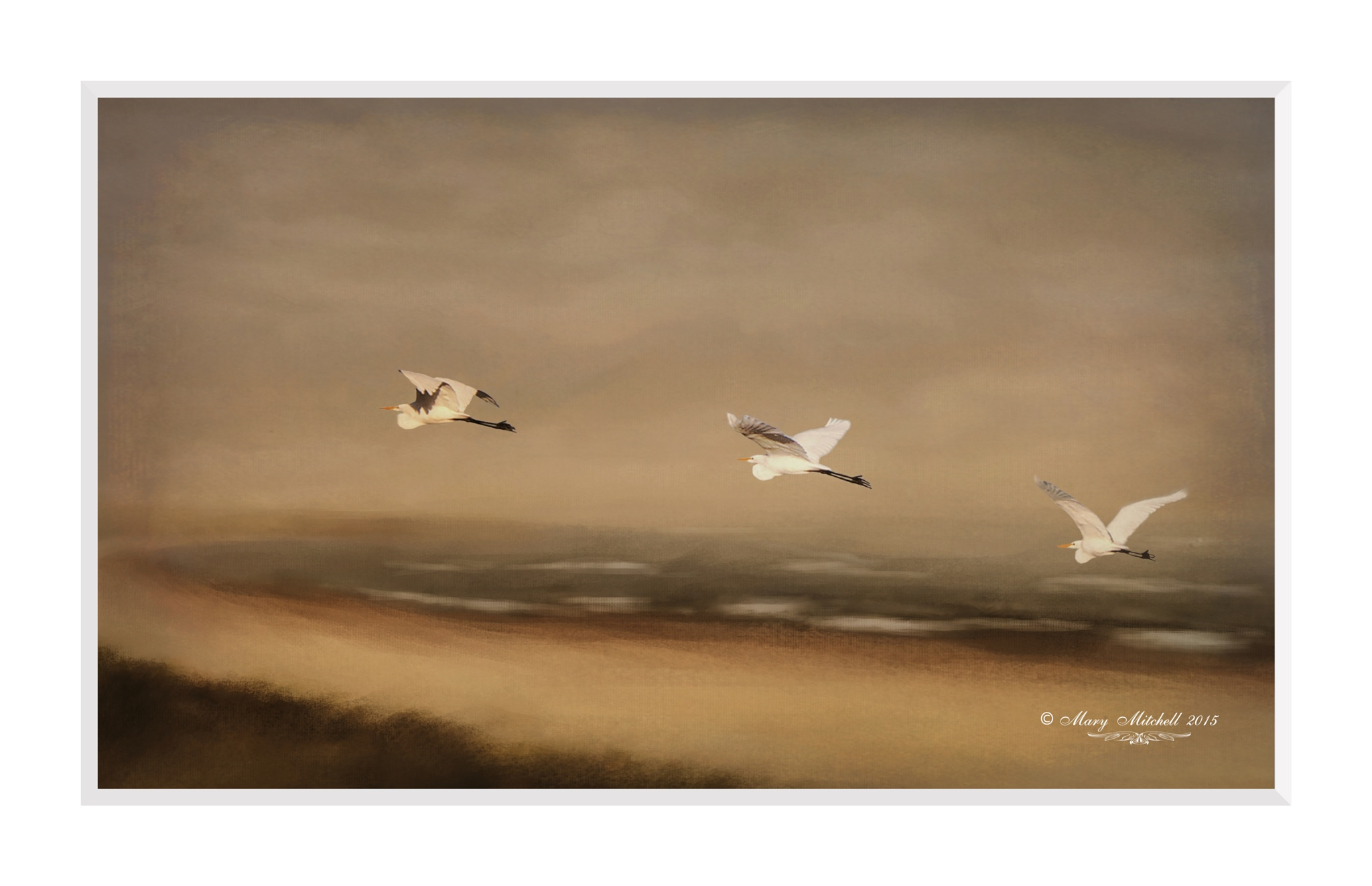 3 Birds in Flight by Mary Mitchell