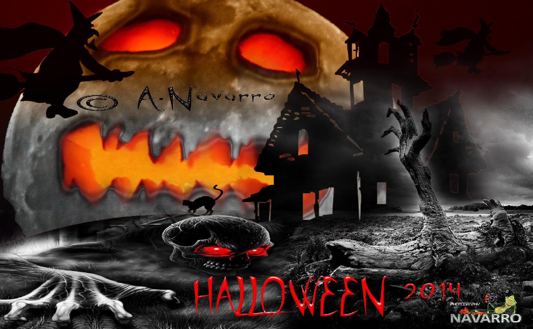 Halloween 2014 by A.Navarro