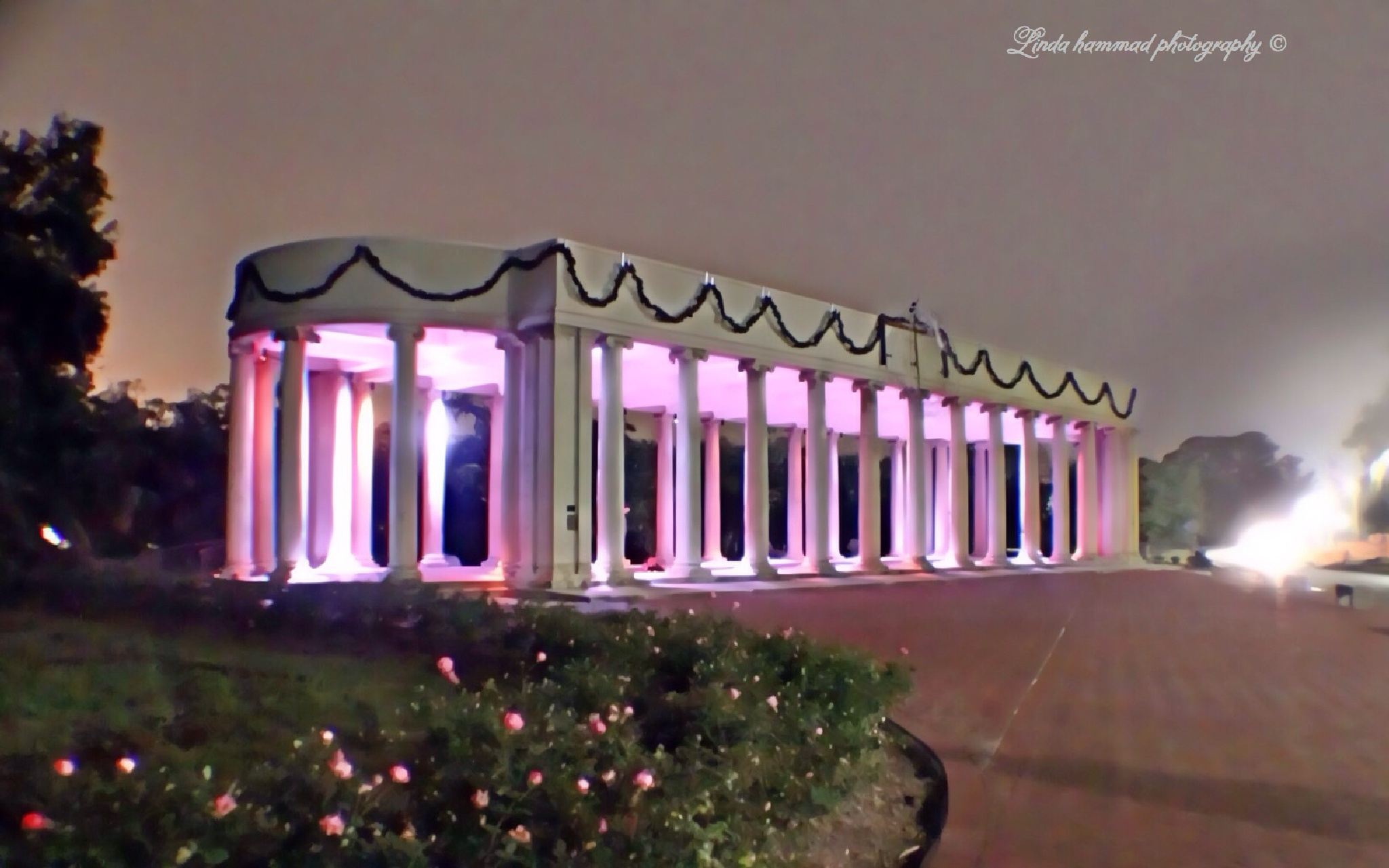 N.O. City park  by Linda Hammad