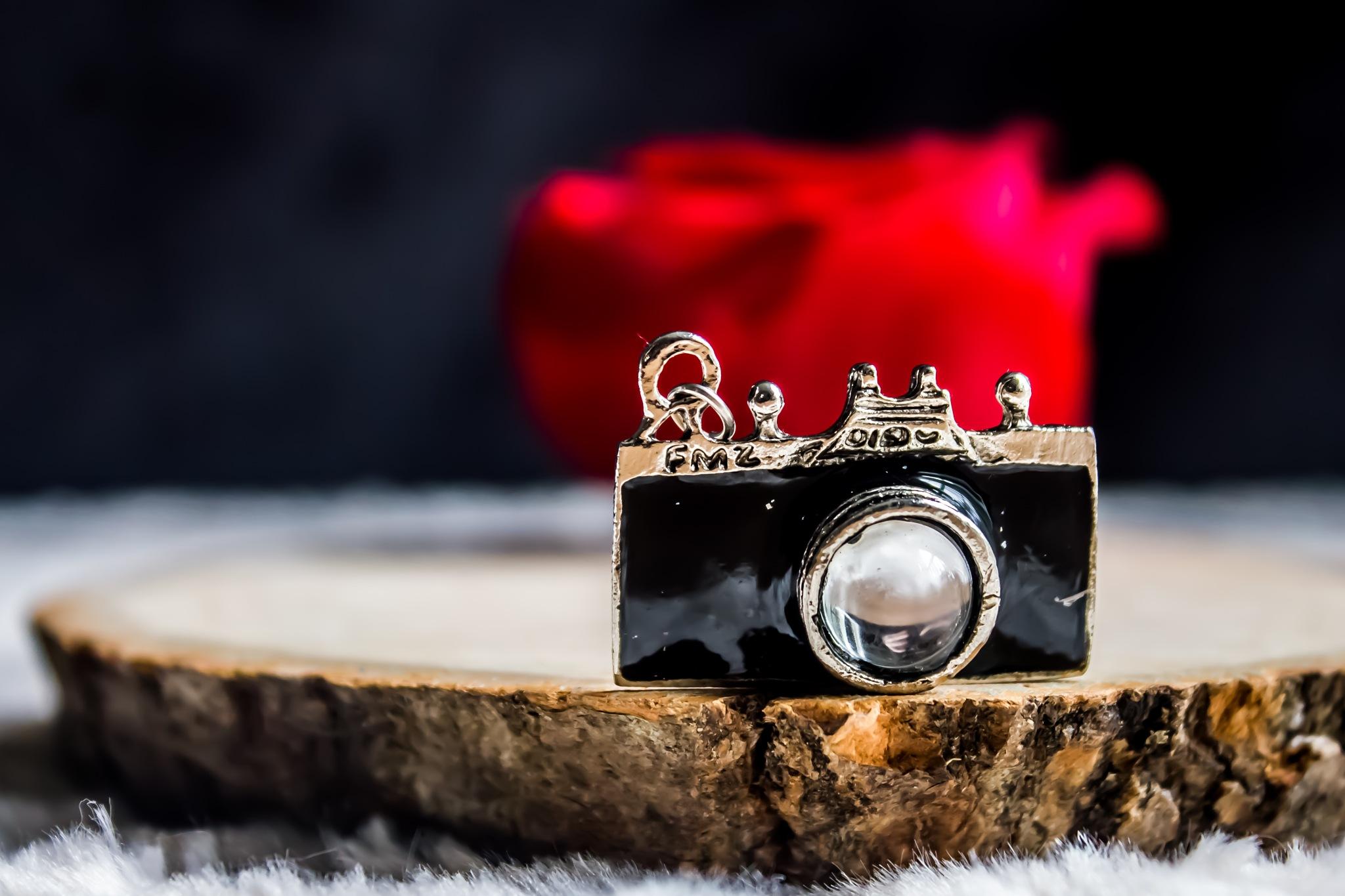 camera by Linda Hammad