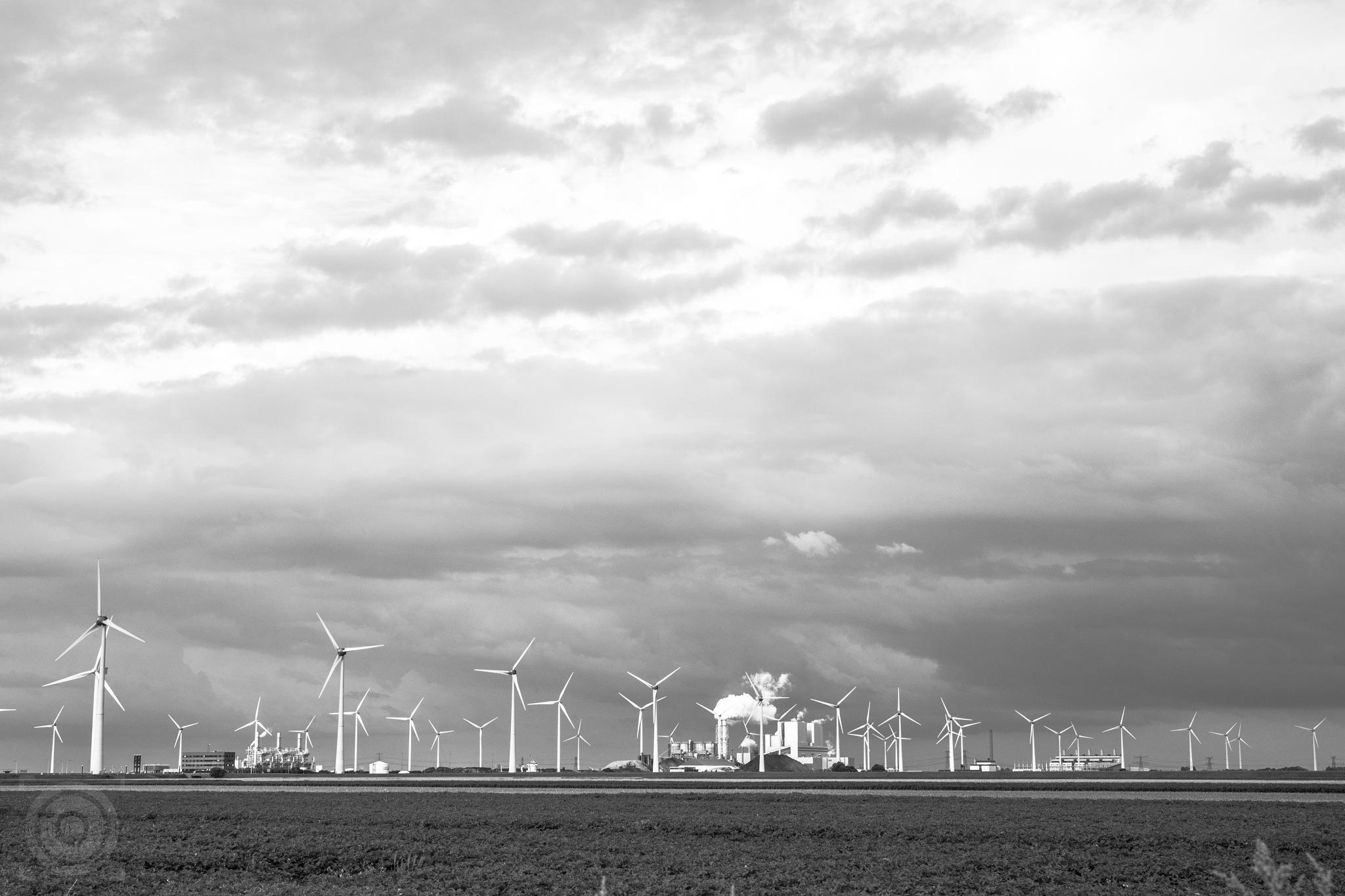 windpark by Alexandra Bode