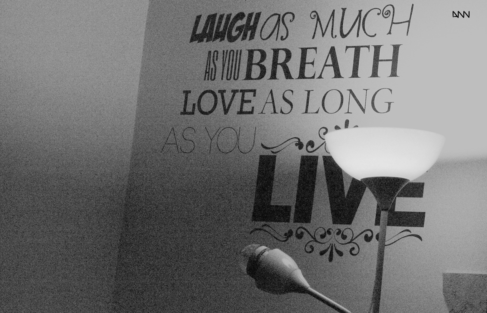 Laugh and Love by Anton Nistor Nicolae
