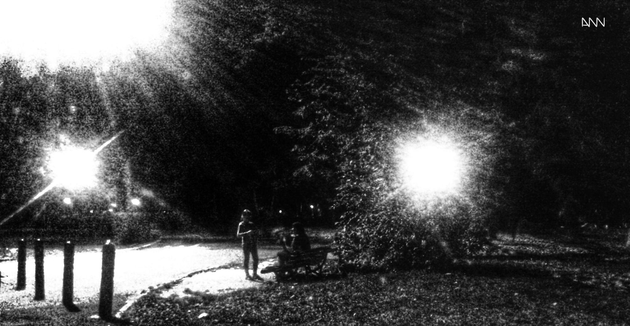 Park Night by Anton Nistor Nicolae