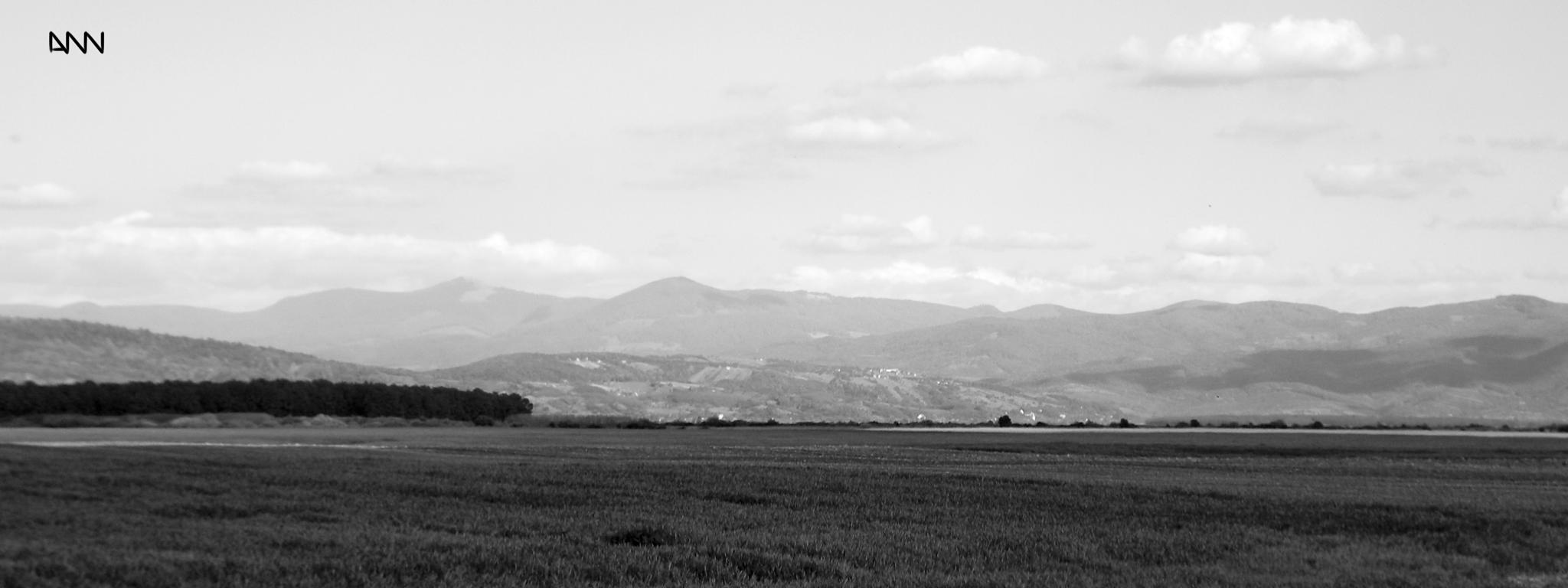 Photo in Black and White #just #open #field #sky #clouds