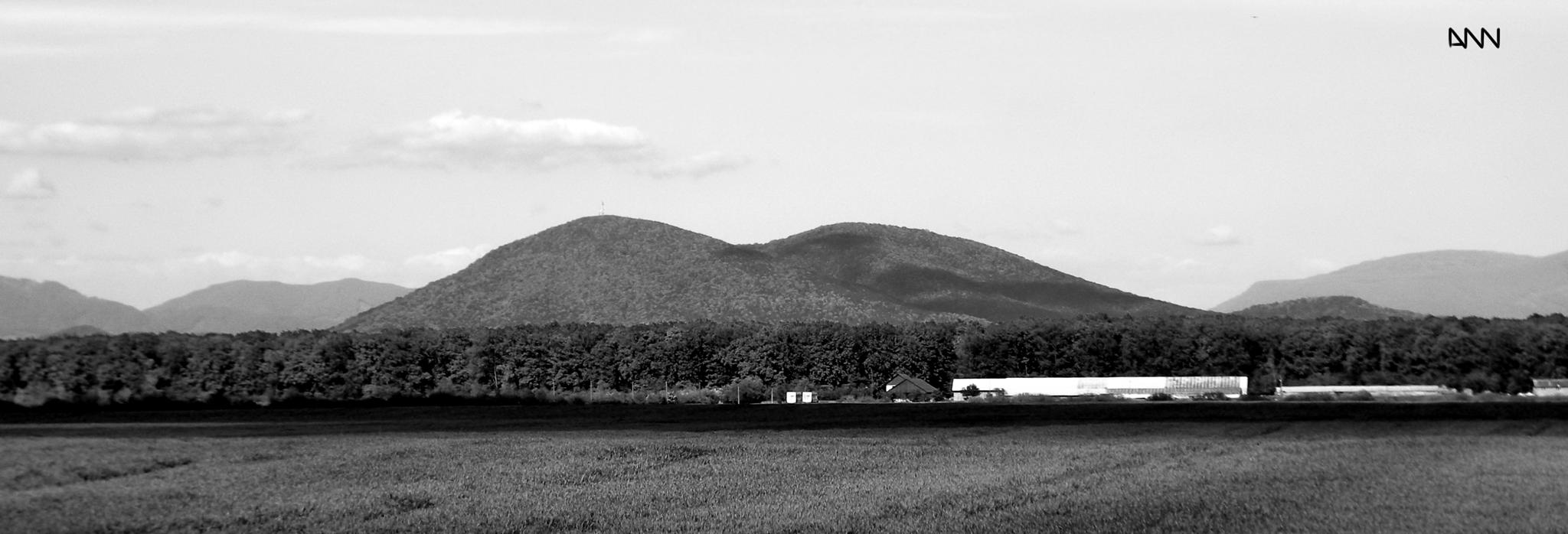 Photo in Black and White #farm #field #land #house #open #sky