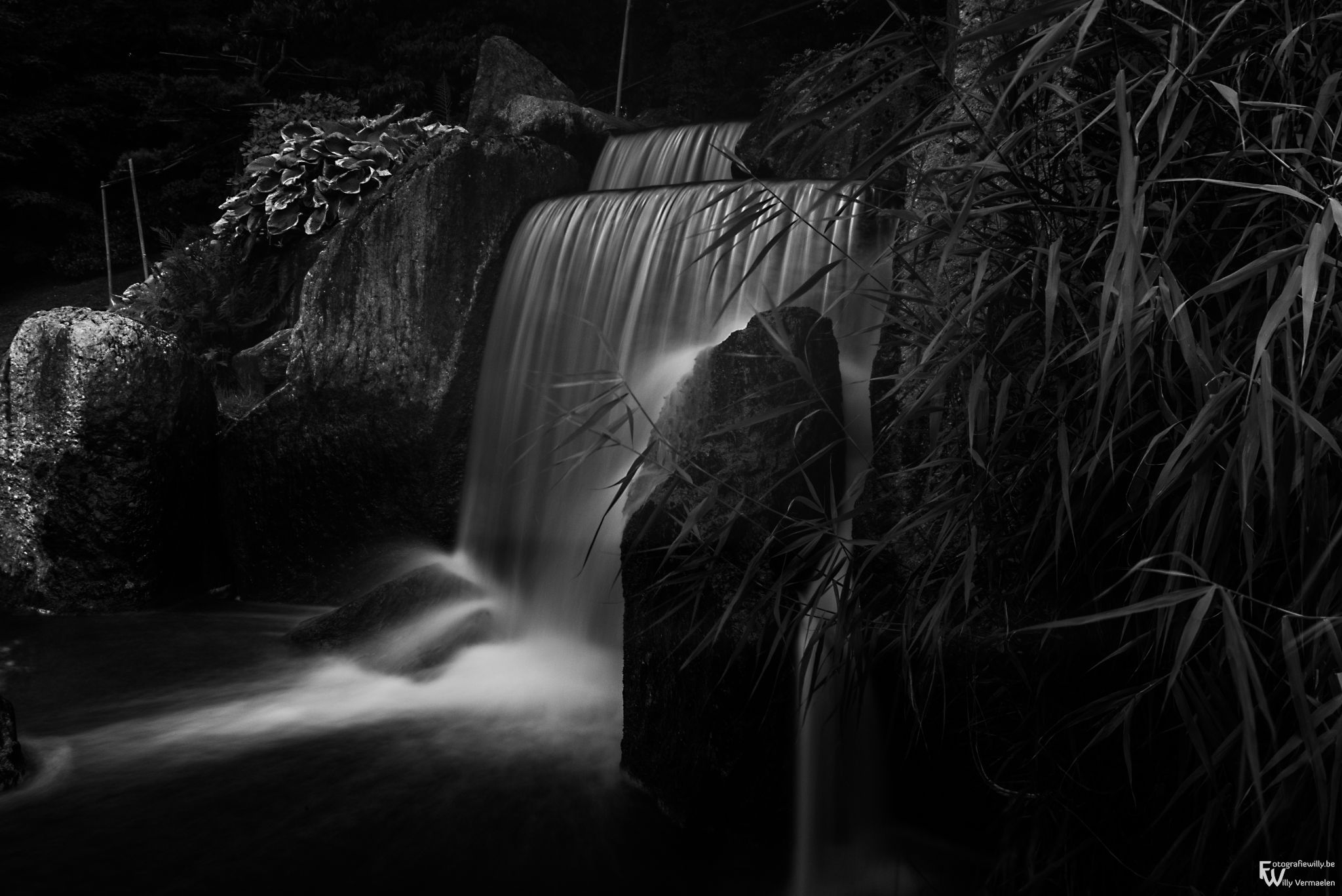 Japanese garden - Hasselt by fotografiewilly