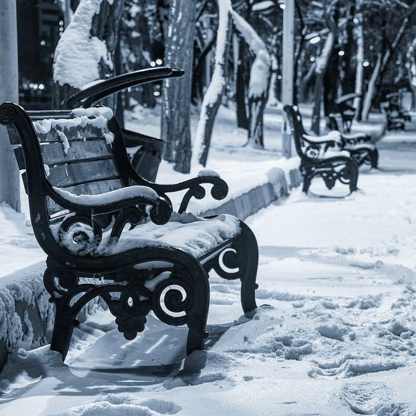 Alone .... by Behnam Khoshbaten