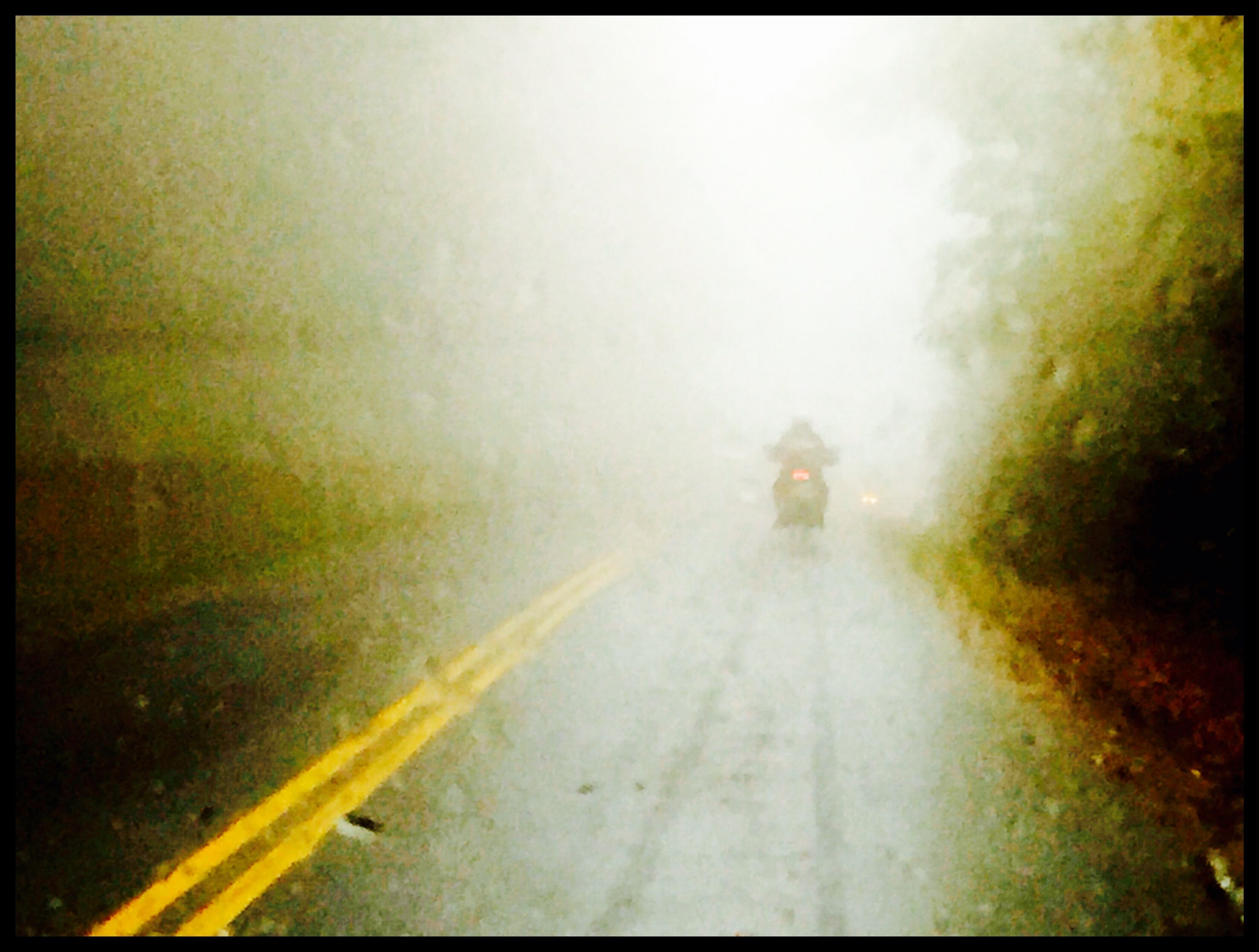 Foggy Drive by D.E.Terry