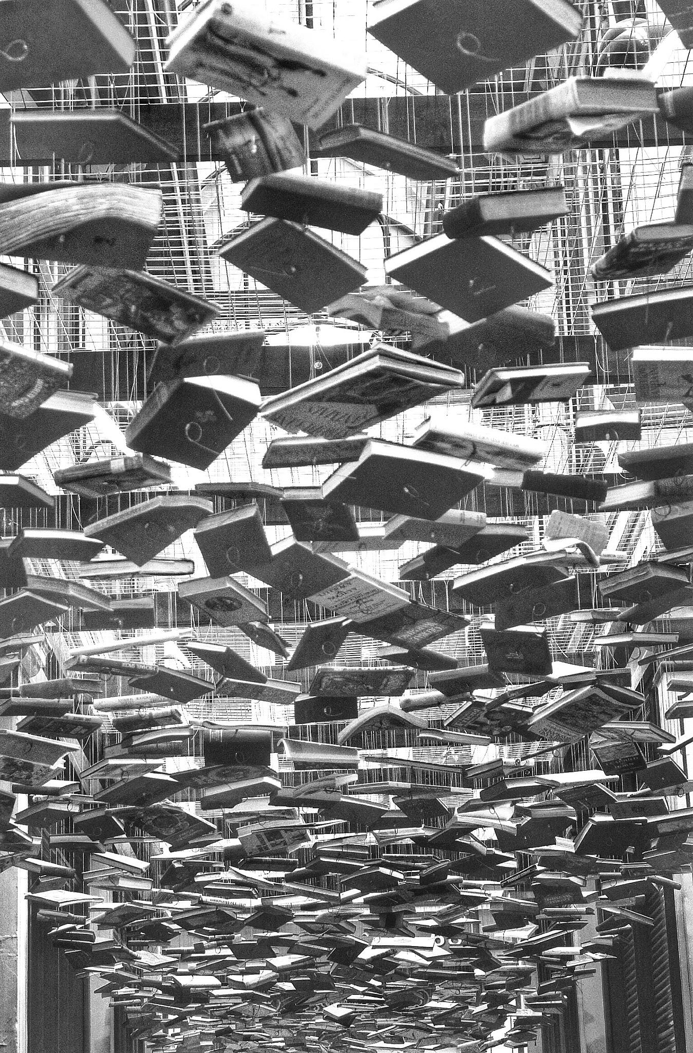 Suspended books by Erol Hasan