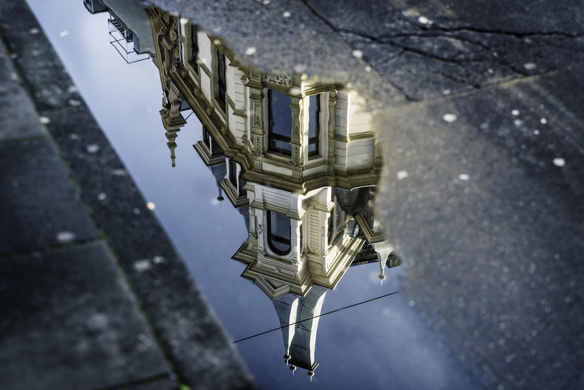 Reflexión by David Mesa