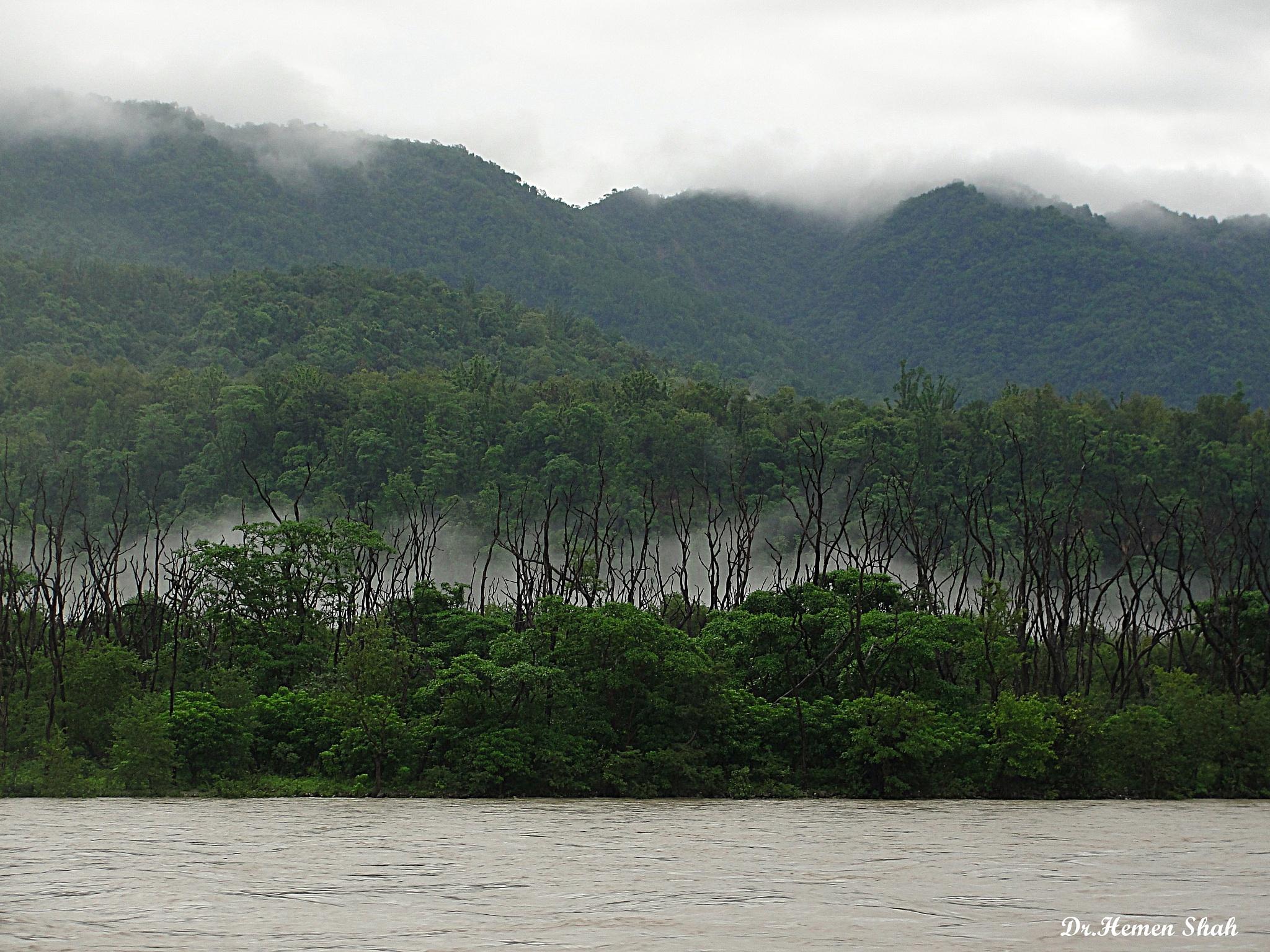 A morning near Hrishikesh & river Ganges. by Hemen