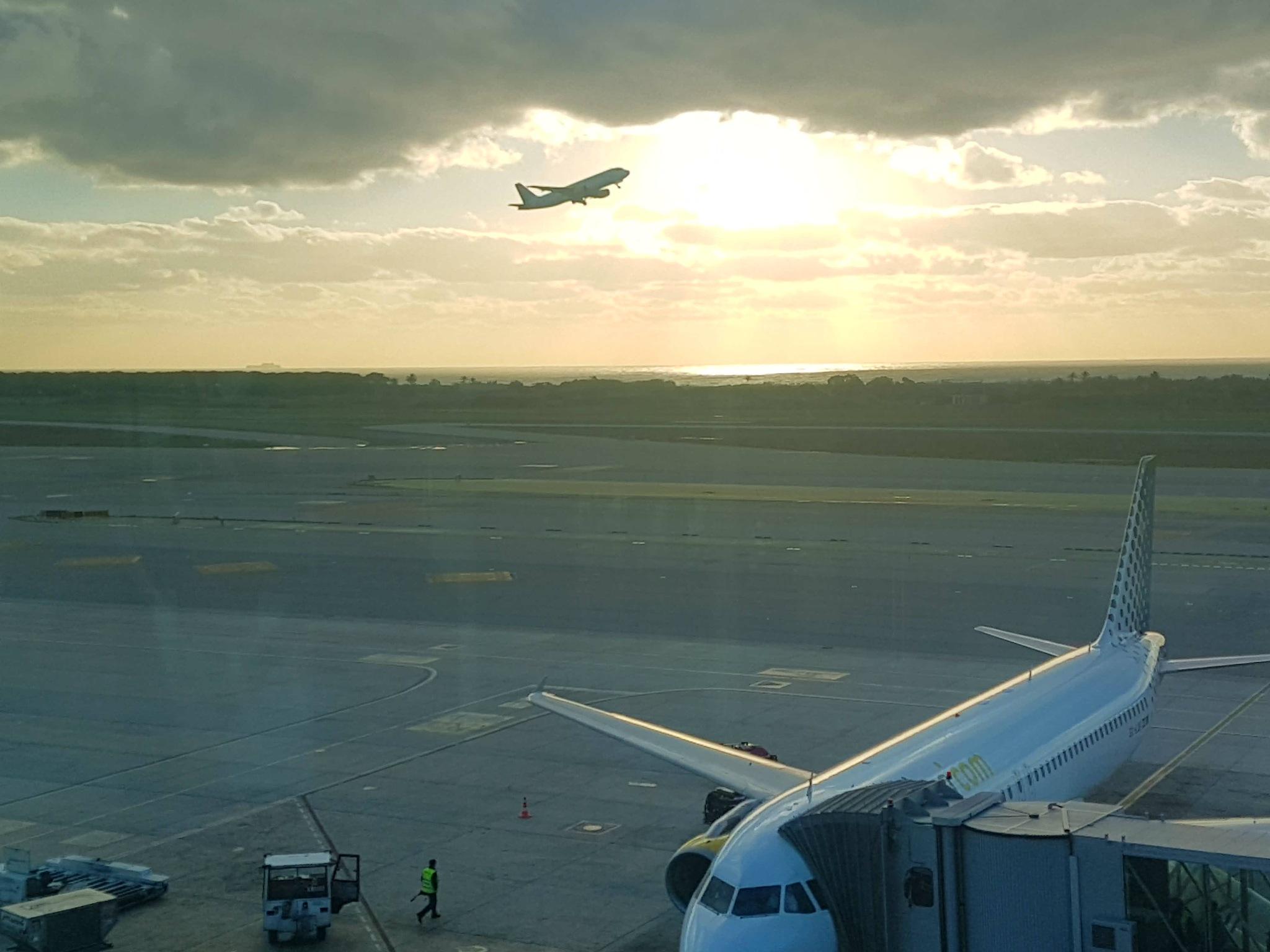 Flying away by PortenyoBarcino