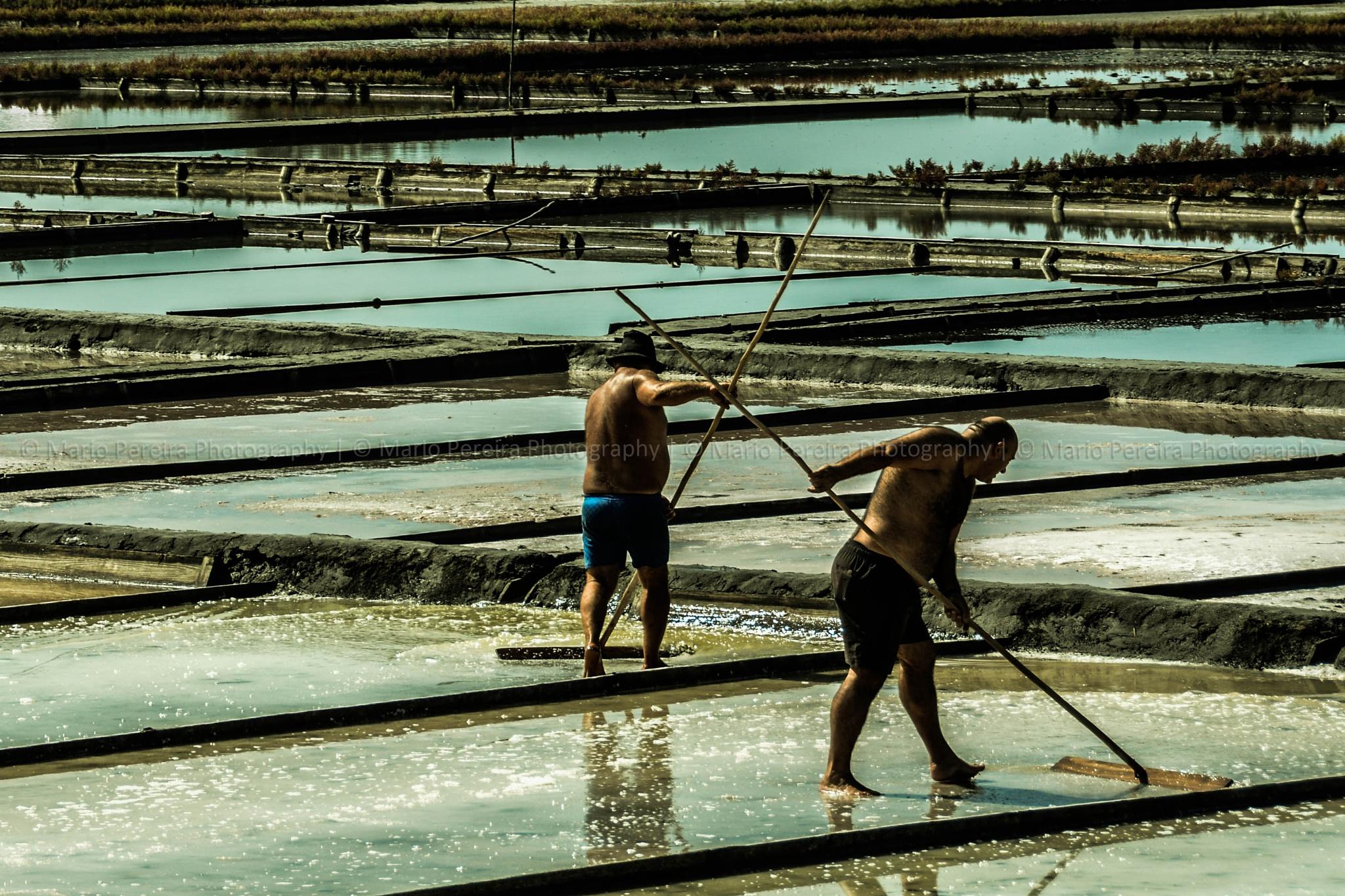 The salt by MarioPereiraPhotography